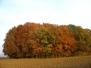 Krásy podzimu
